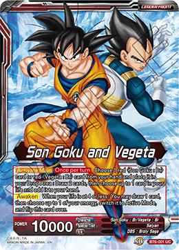 Son Goku and Vegeta - SSB Gogeta, Fusion Perfected
